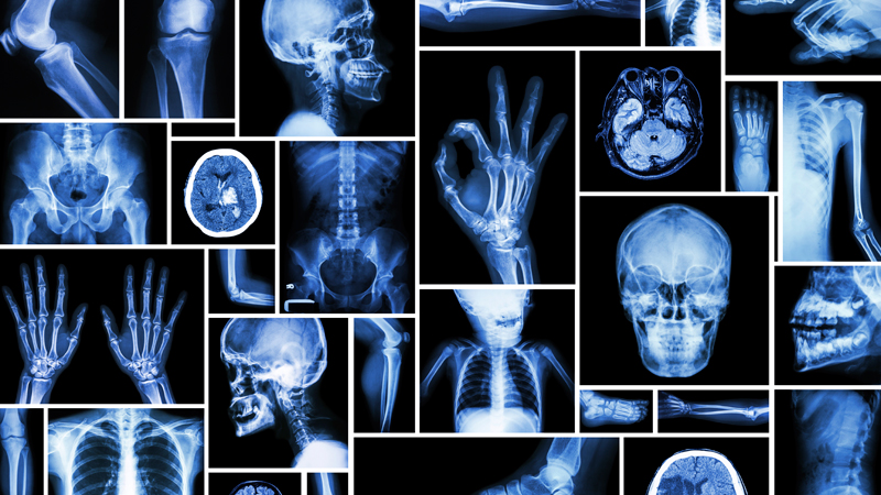 Radiology Technician create autobiography online