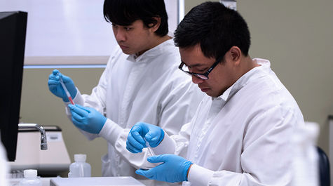 students working in a lab doing research